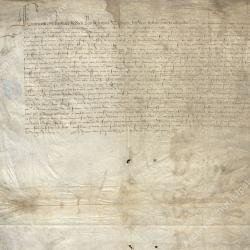 Lettre patentes confirmant les privilèges accordés (octobre 1528)
