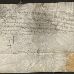"""Lettre patente sous forme de charte confirmant à la ville quatre ans du droit d'acheter et prendre """"sel non gabelle [...]"""". Paris (2 novembre 1556)"""